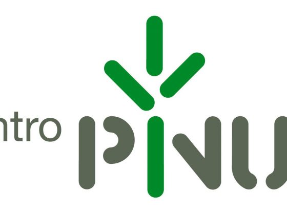 Logo: Centro Pinus
