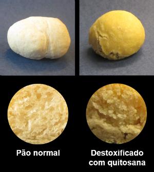 Foto: Pão Destoxificado com quitosana